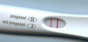 Pregnant while breastfeeding pregnancy test results